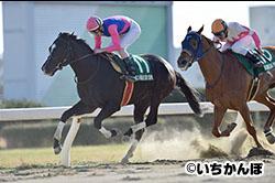 名古屋大賞典2016 - レース結果...